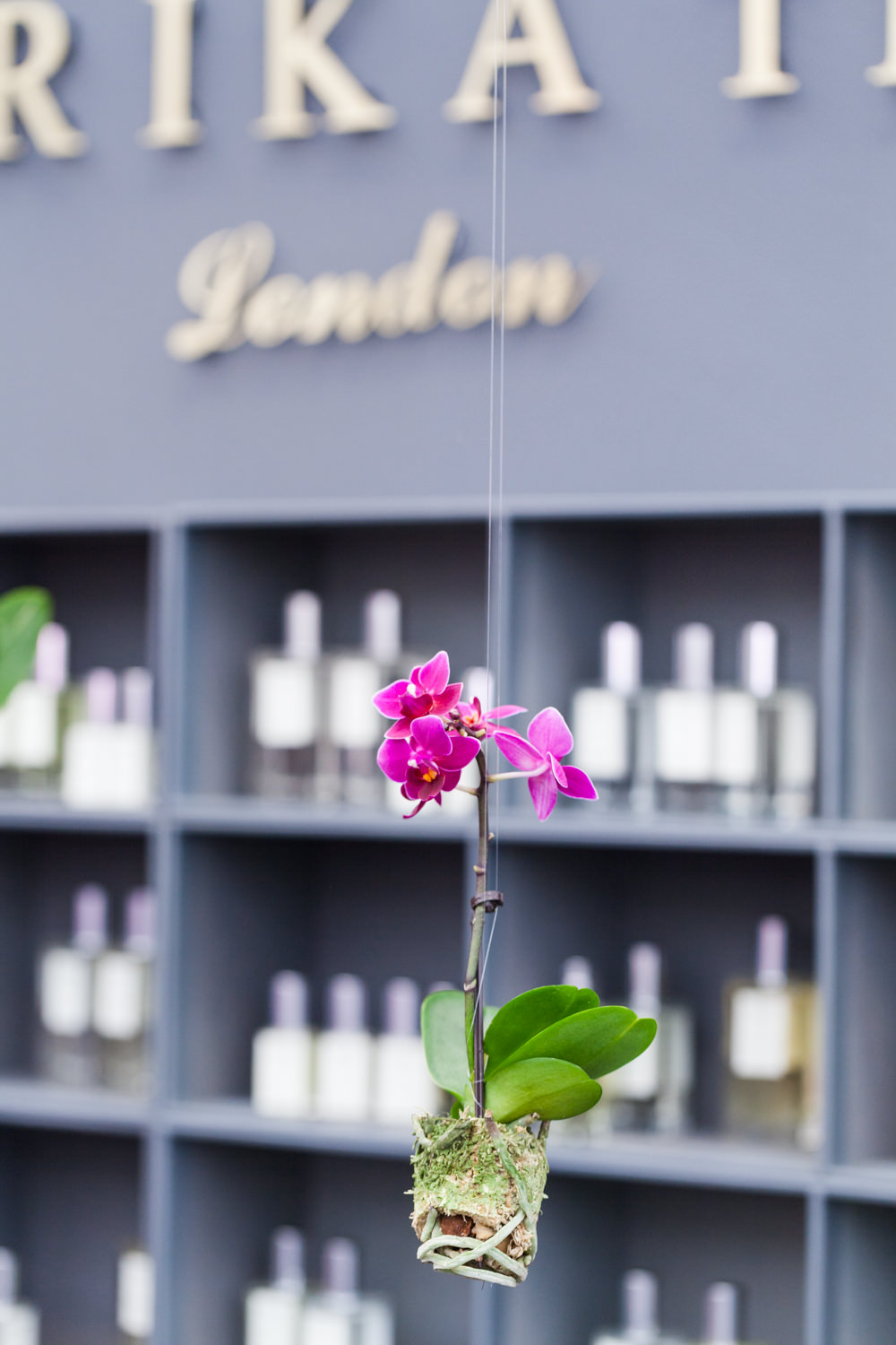 In love with Chandrika Thomas' visual merchandising style on her luxury fragrance stand in the Country Living Marquee.