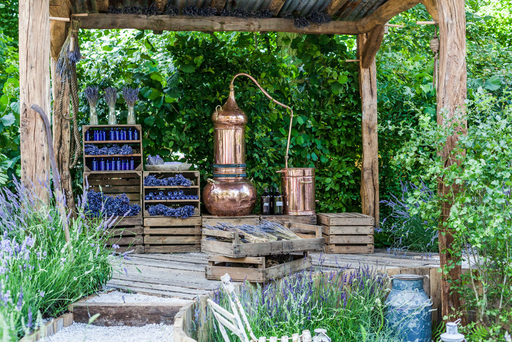 My favourite garden of them all was The Lavender Garden sponsored by Shropshire Lavender, with a real copper still. Designed by the very talented Paula Napper, Sara Warren & Donna King and built by Burnham Landscaping & The Landscape Consultants Ltd.