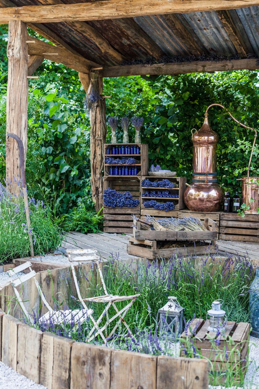The Lavender Garden - Hampton Court Flower Show 2016 - Katie Spicer Photography