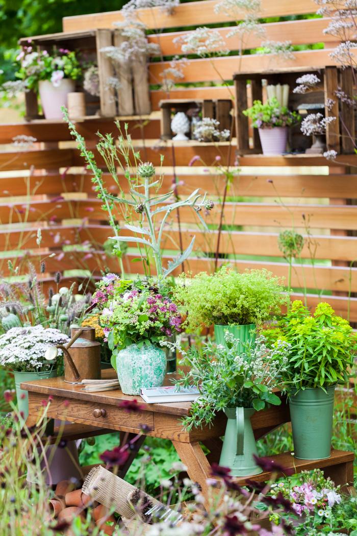 Katie's Garden - Hampton Court Flower Show 2016 - Katie Spicer Photography