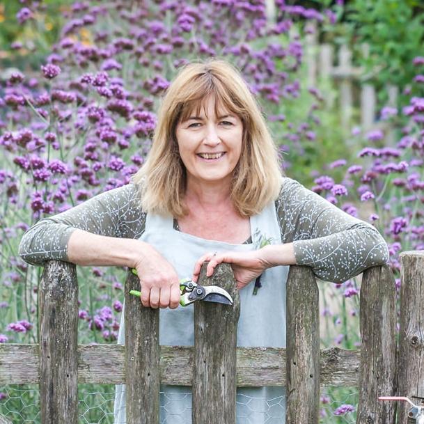 Sue Gillman ~ Garden of England Flowers