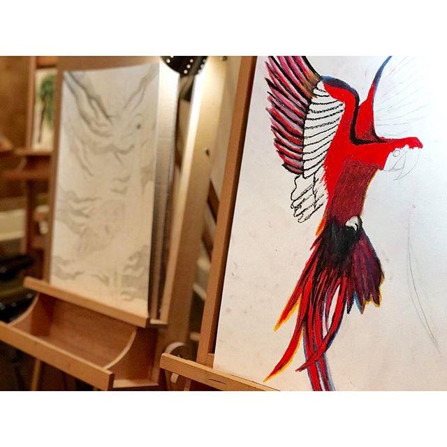 #ontheeasel #studioshot #thestudyofbirds #wip #visualarteducation