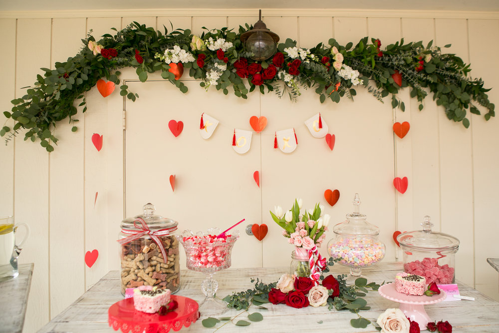 Fete Nashville_Valentines Dog Party_Nashville event planner20.jpg