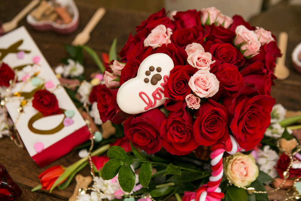 Fete Nashville_Valentines Dog Party_Nashville event planner38.jpg