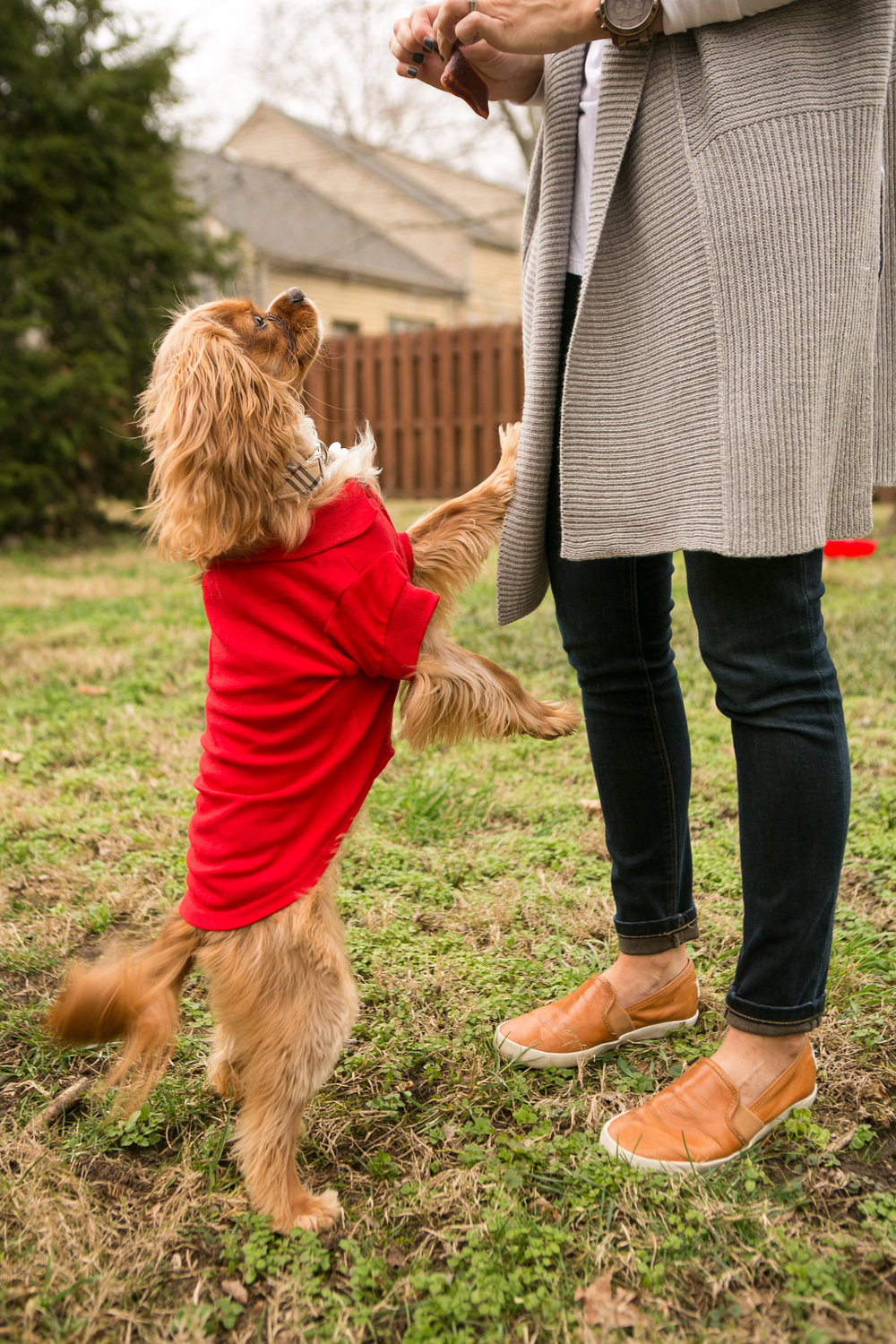 Fete Nashville_Valentines Dog Party_Nashville Weddings16.jpg