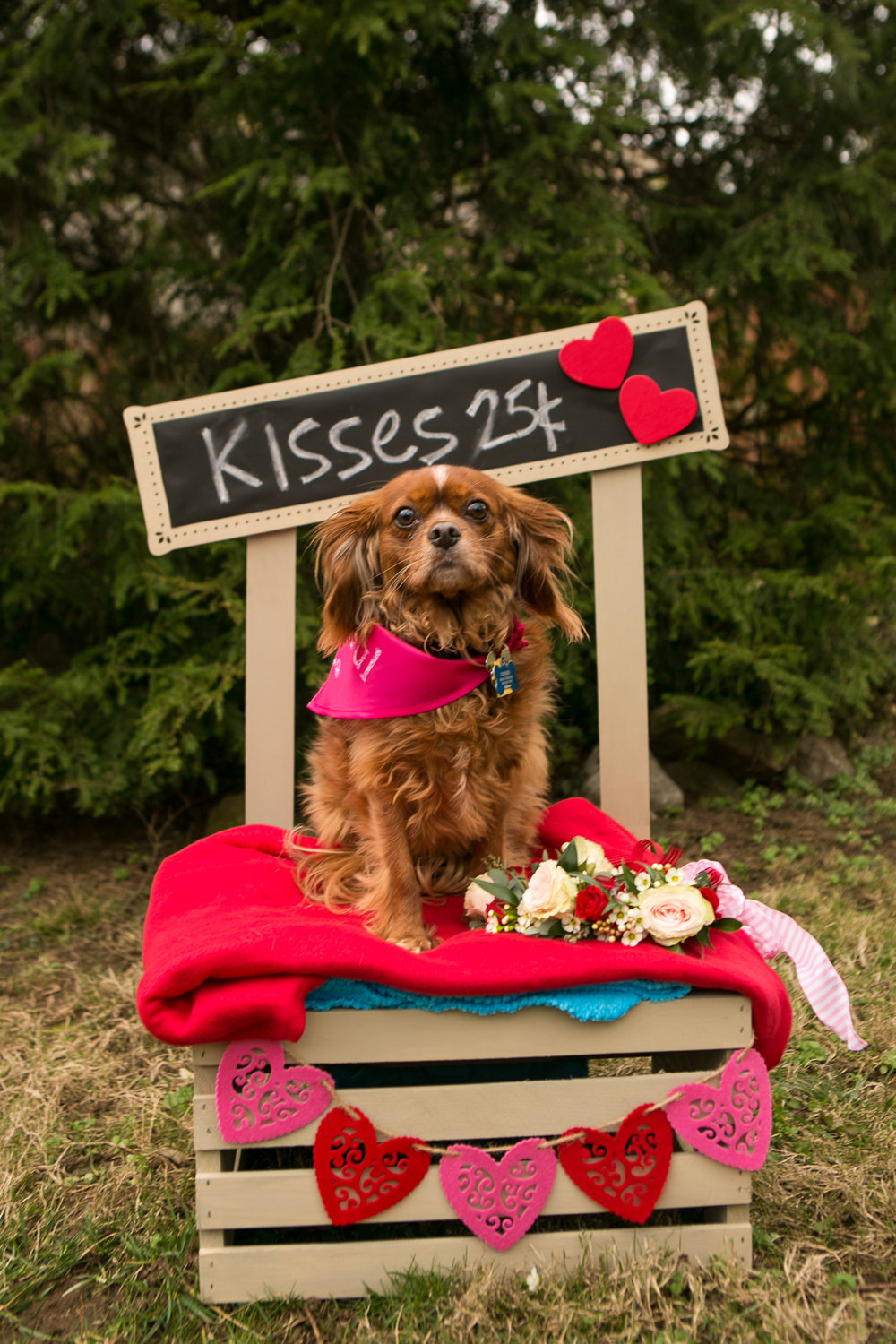 Fete Nashville_Valentines Dog Party_Nashville Weddings17.jpg