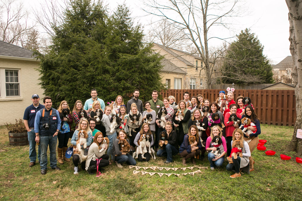 Fete Nashville_Valentines Dog Party_Nashville Weddings28.jpg