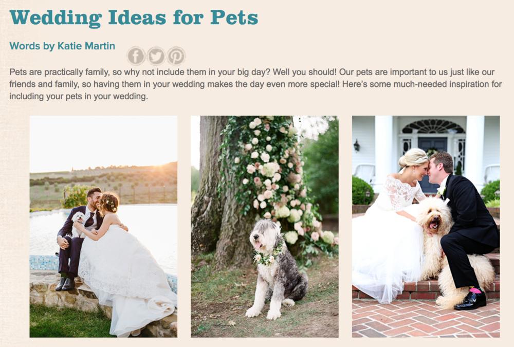wedding ideas for pets nashville.png