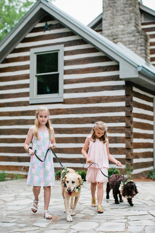 1dogs in weddings nashville Kristyn Hogan.jpg