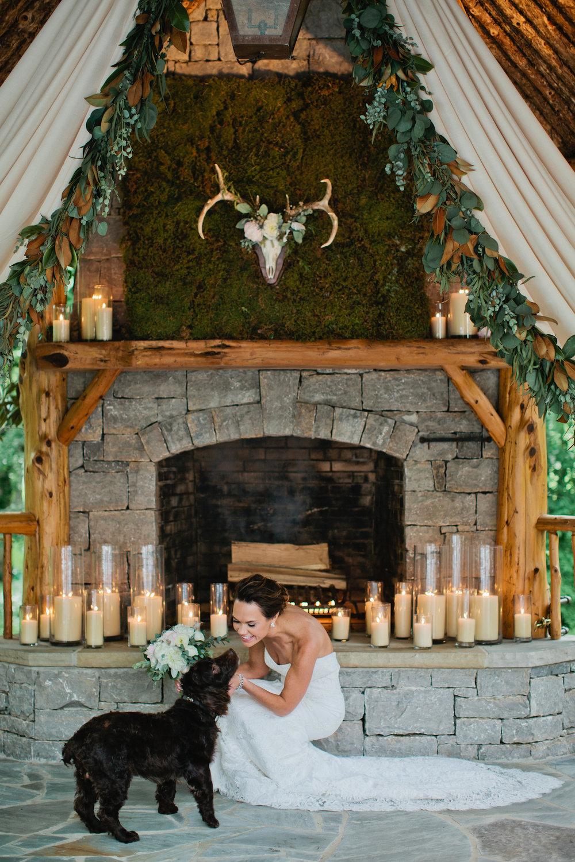 5dogs in weddings nashville Kristyn Hogan.jpg
