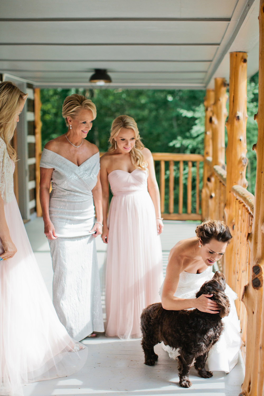 6dogs in weddings nashville Kristyn Hogan.jpg