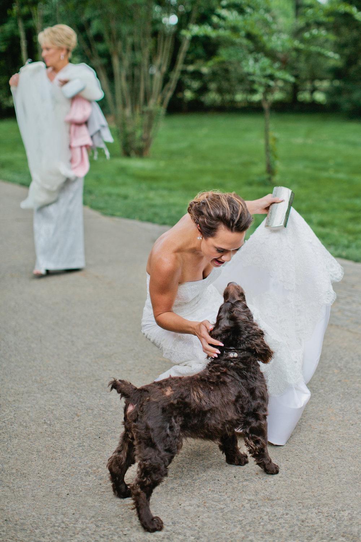 9dogs in weddings nashville Kristyn Hogan.jpg