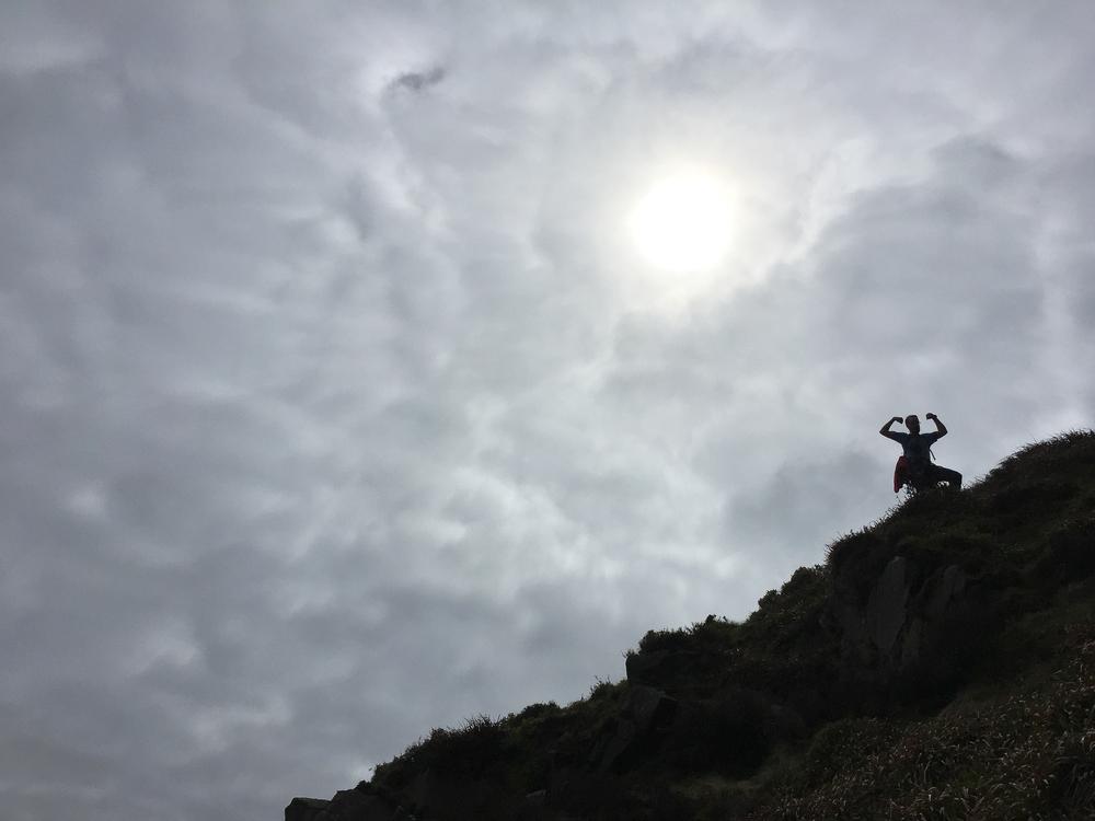 Alasmennessä havaittiin aurinkoa vasten harvinainen Walesin Vuoristoapina.