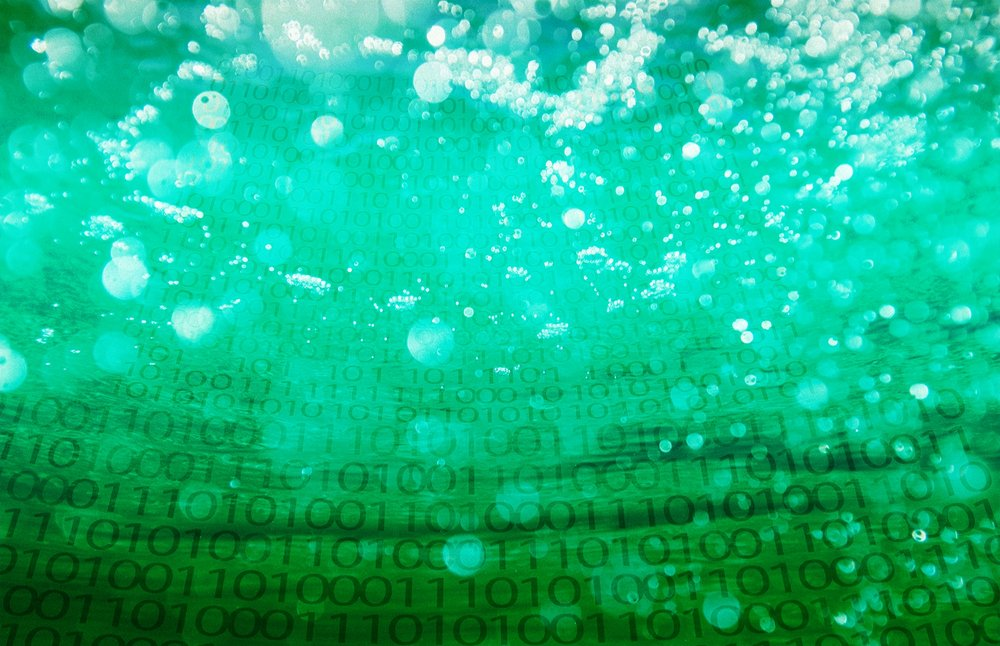 Data Hygiene - In order to be effective, the data that drives your business needs to be clean and accurate. Our array of hygiene services can scrub and normalize a variety of data types so it can support your business objectives. Missing information? We can help with that, too. Our append services can pull in the data necessary to extend the reach of your business.Read more