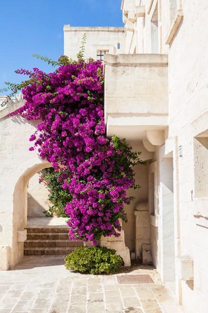 Borgo Egnazia (Image courtesy of Conde Nast Traveller)
