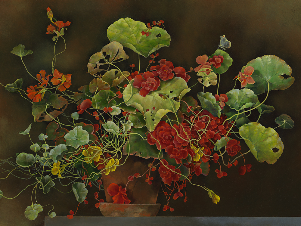 """Nasturtiums and Begonias in Terracotta Planter,  18"""" x 24"""", Oil on board"""