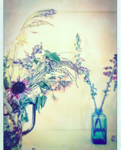 A delicate and airy photograph of two vases filled with purple flowers against an off-white wall.