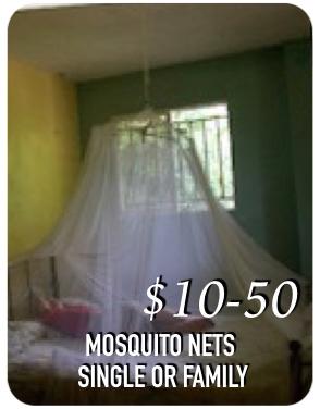 mosquitonet.jpeg