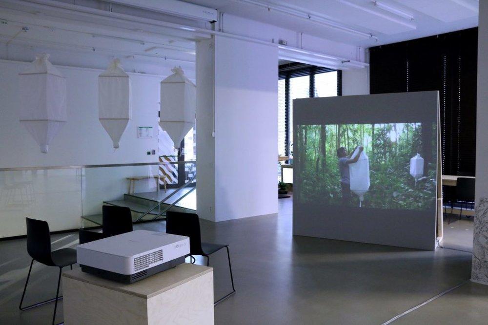 Ursula Biemann, BIOSEMIOTIC BORNEO  (2016).Installation shot: Aage A. Mikalsen / Kunsthall Trondheim
