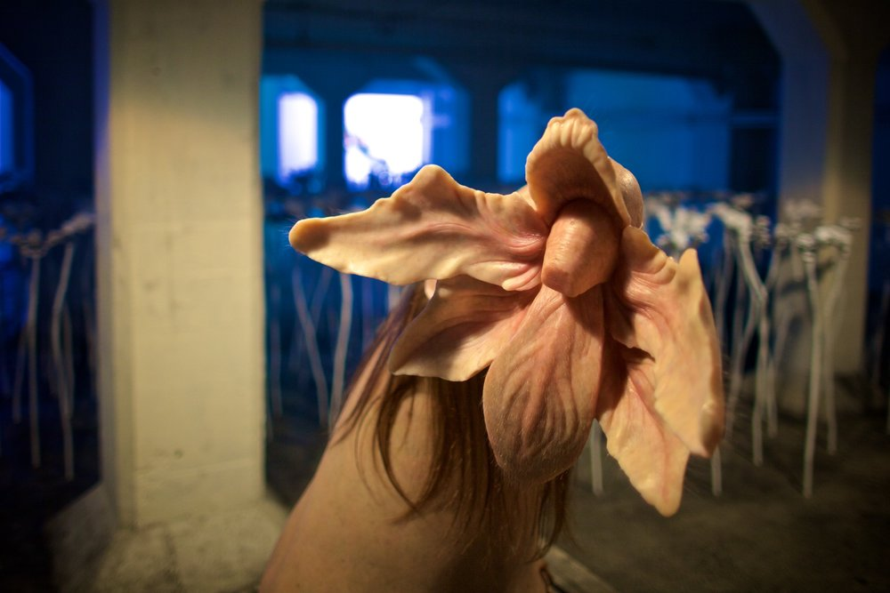 Patricia Piccinini,  Bootflower,   2015
