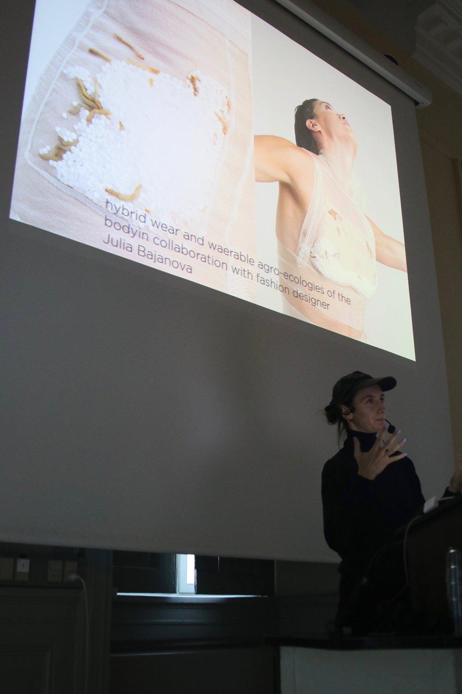 Petja Ivanova: Fermenting Modernity: 'lively soups of insect bodies'
