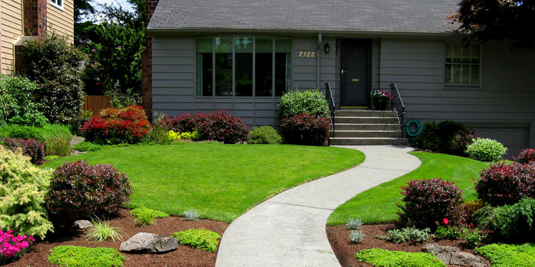 Island Landscape is a locally owned company with over 20 years of  experience in Northwest horticulture and landscape service.
