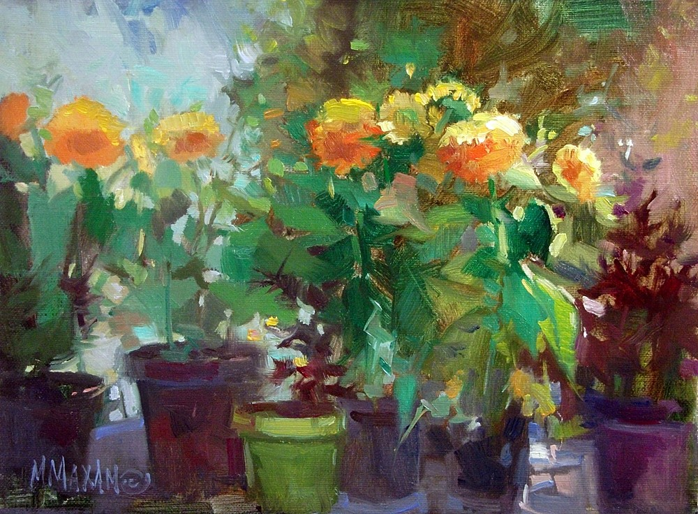 Mary Maxam, Sun Gold