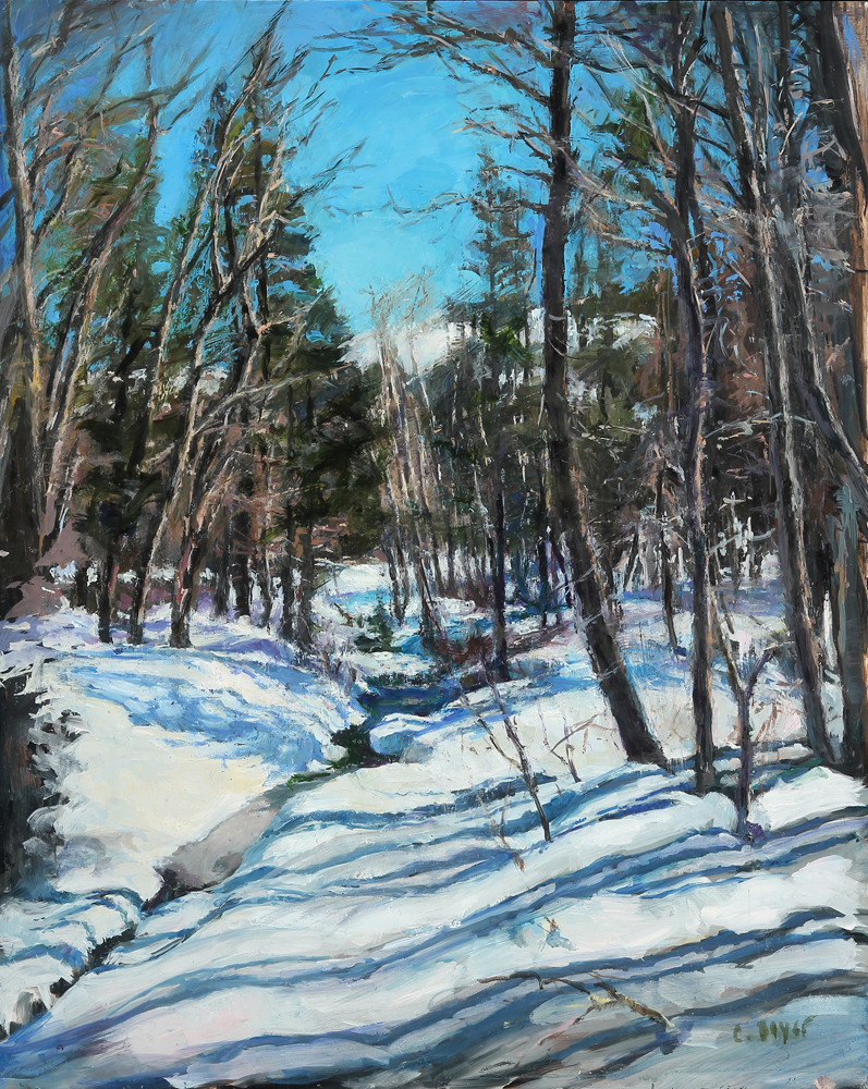 Cathy Boyer, Snowy Creek