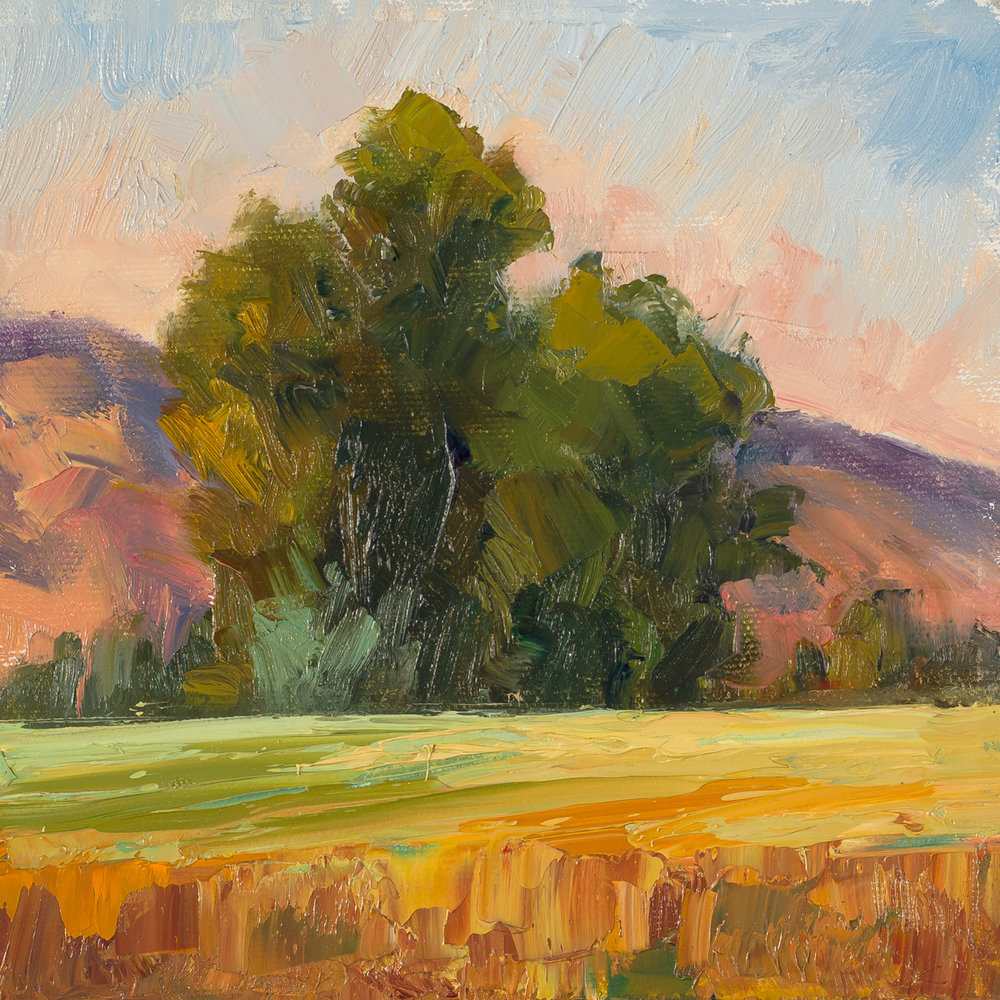 Julie Rumsey