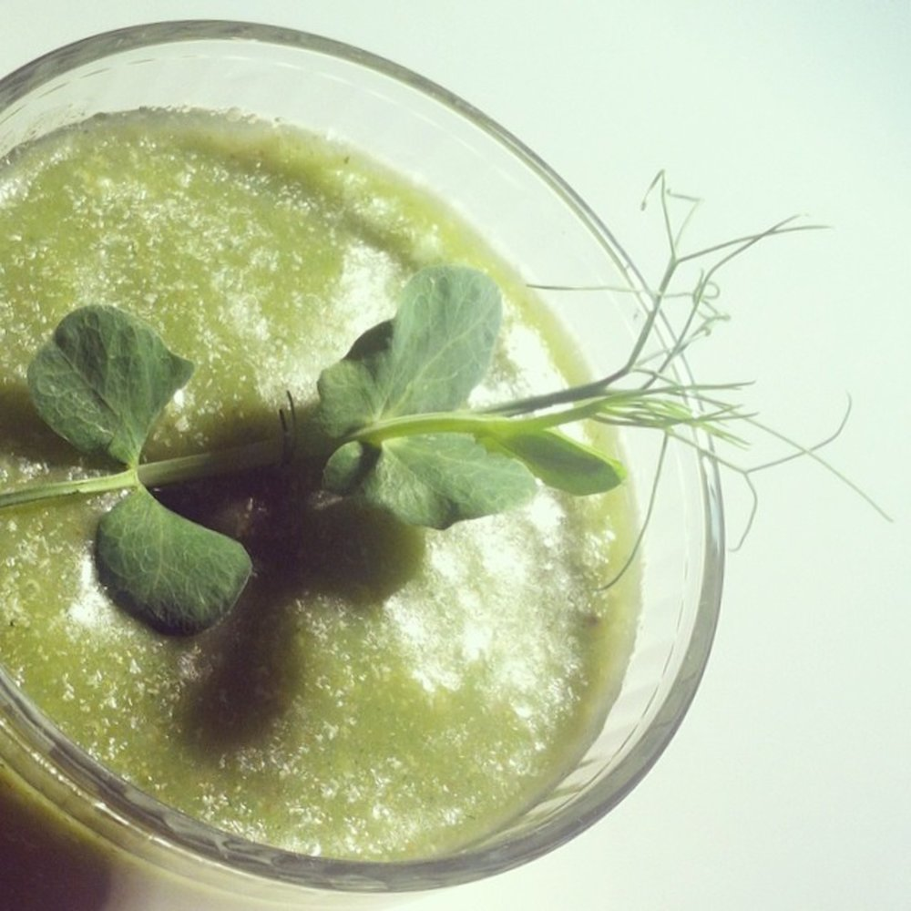sprout-smoothie.jpg