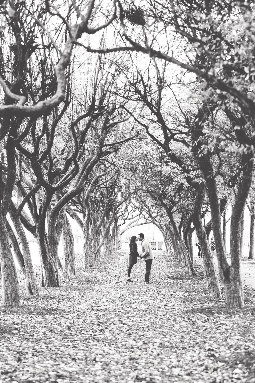 Le Cape Weddings - Millenium Park Engagement - Isha and Purvik 3344.jpg