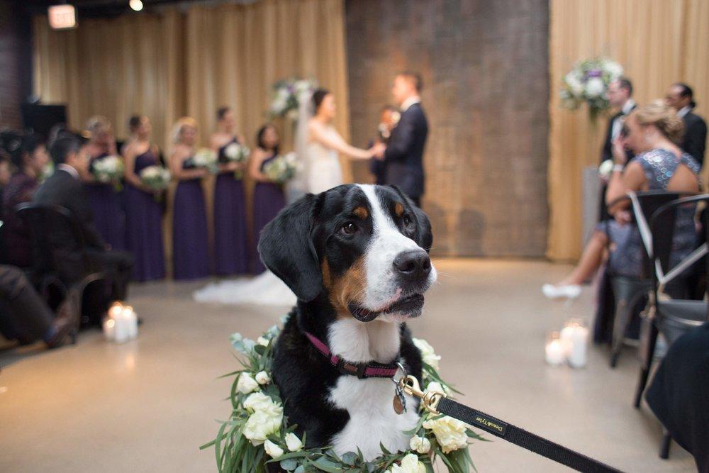 Le Cape Weddings - Greg + Jody Ovation Wedding_-439.jpg