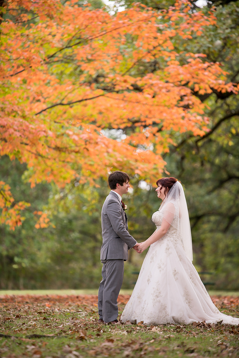 Le Cape Weddings - Star Wars Themed Wedding Illinois - Jessica and Nathan -303.jpg