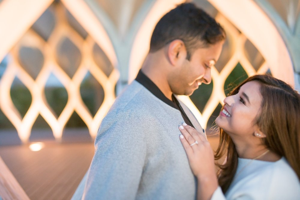LeCapeWeddings_Surbhi_Engagement Session Chicago -02702.jpg