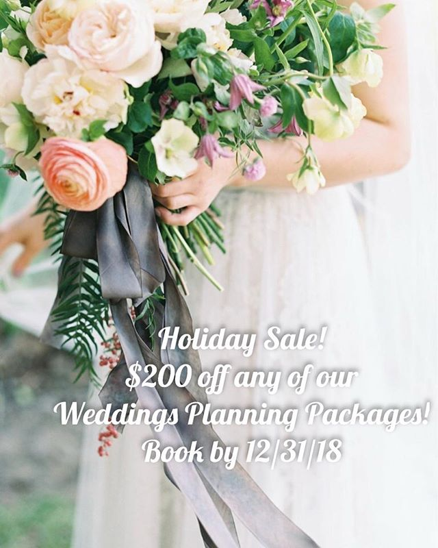 We are offering a holiday sale now until December 31, 2018! Get $200 off ANY wedding planning package if you book by the end of this year. We would love to help you coordinate and design the wedding of your dreams so email us at info@jennalaineweddings.com for more information!