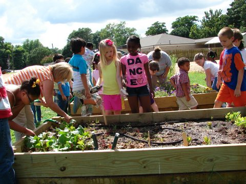 Central Elementary students plant and maintain the butterfly gardens built by Dillon Howell.
