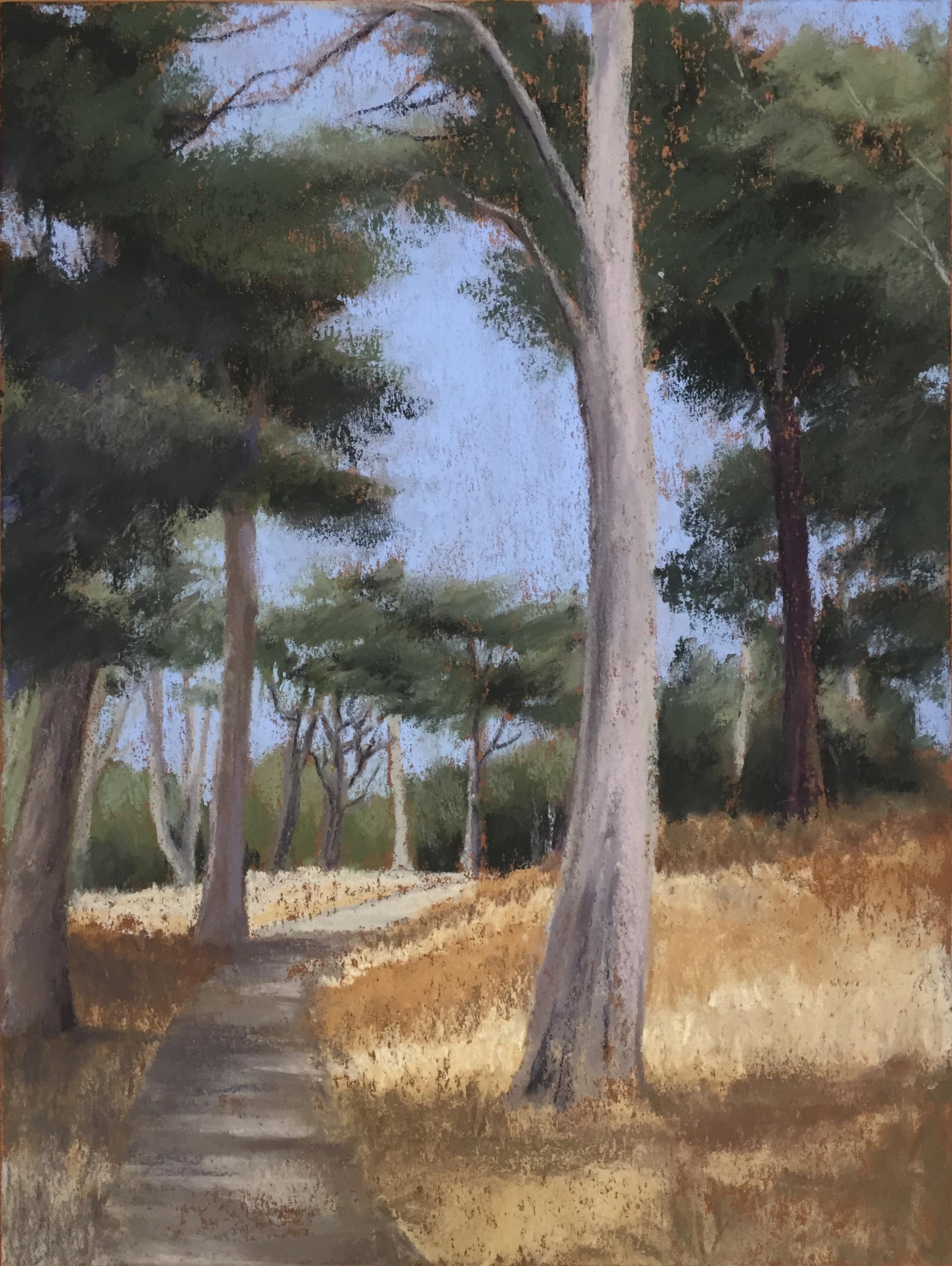 Golden Gate Park Heath Massey