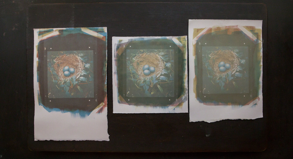 "These gum bichromate prints are printed from the same negatives.... The differences arise from the amount of pigment used in relation to the gum arabic + potassium dichromate mixture.   These prints are all approx. 4x4""   Each individual print is $350 matted"