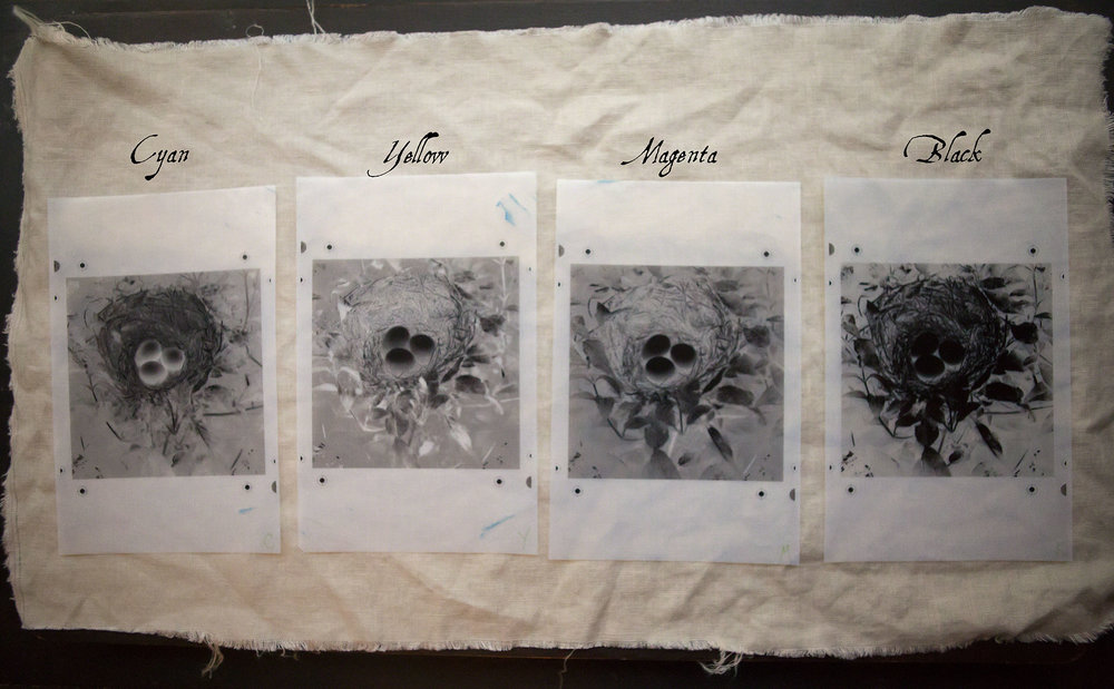 Separation negatives: Cyan, Yellow, Magenta and Black  Each one is slightly different to allow varying degrees of pigment to be exposed for the image