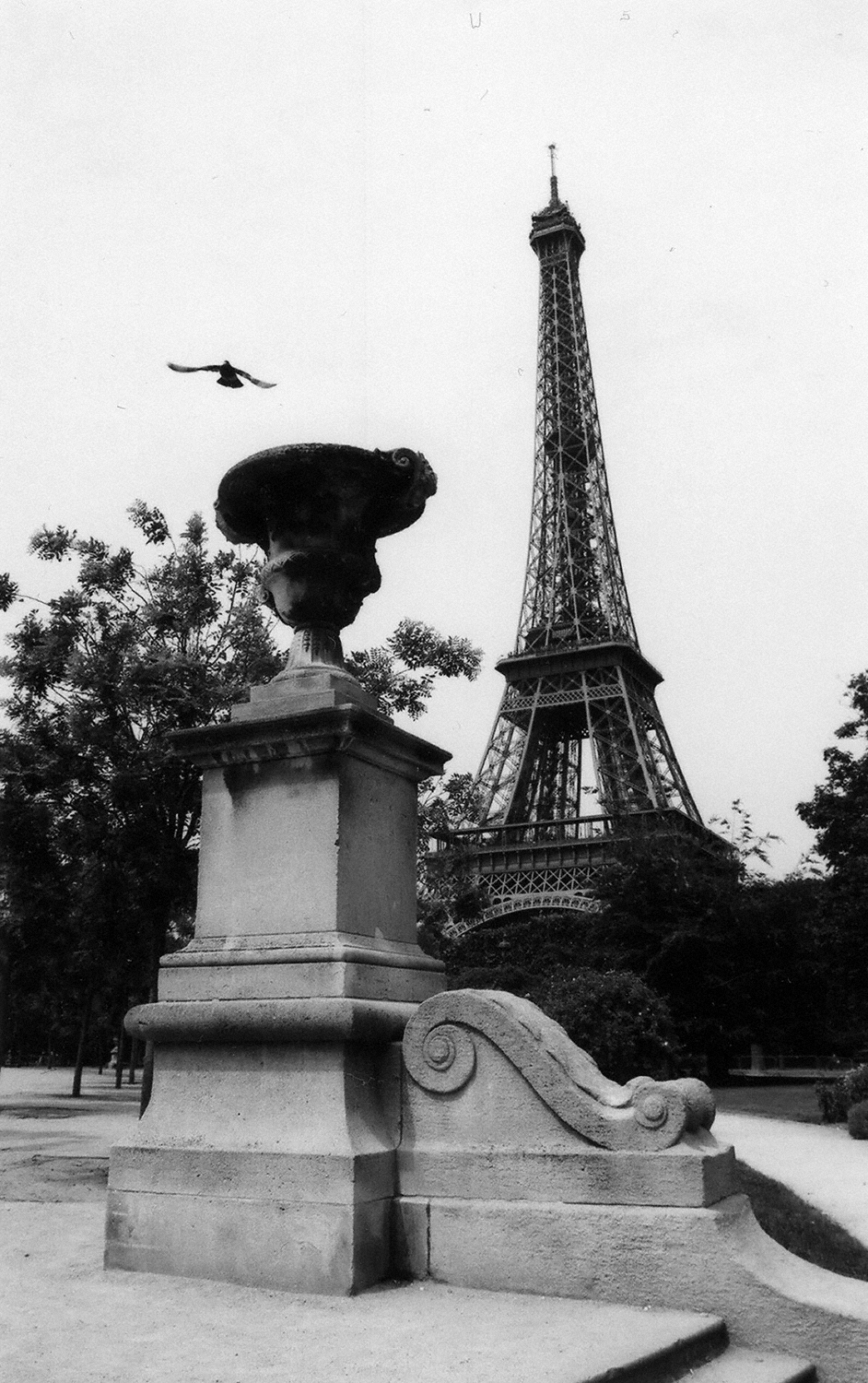 Paris: Flight