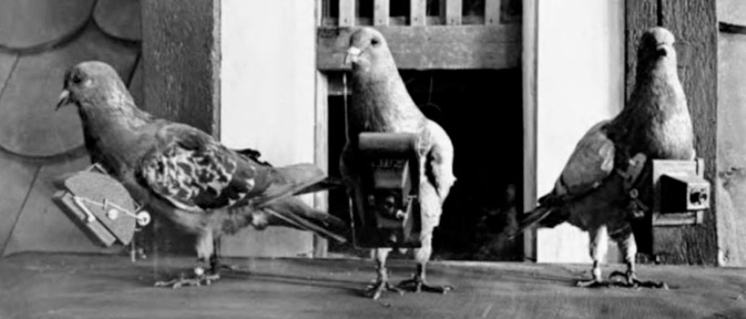 The First Drones circa 1907 In 1907 German apothecary Julius Neubronner invented an aerial photography technique know as pigeon photography. A homing pigeon was fitted with an aluminum breast harness to which a lightweight time-delayed miniature camera was attached. [Source: https://en.wikipedia.org/wiki/Pigeon_photography]
