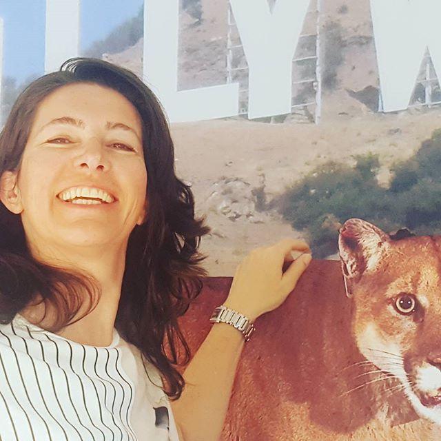 I got to pet a mountain lion today!