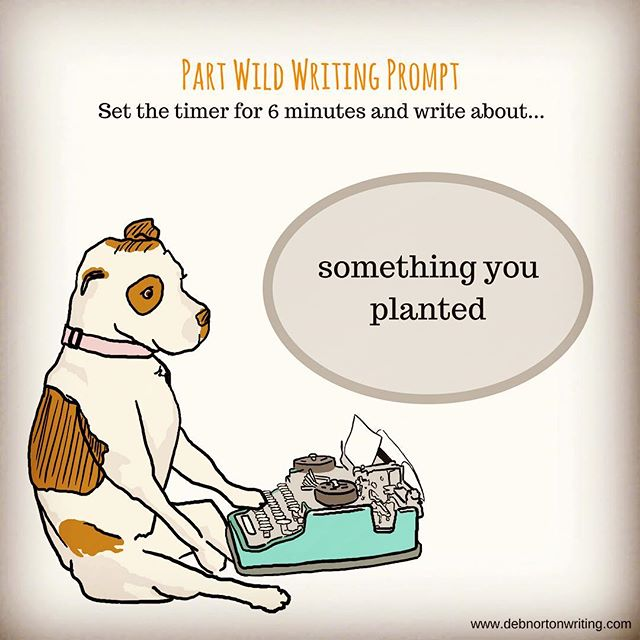 Prompt: A tree, a seed, a garden, a crop, an idea, a kiss, a punch - you've planted a lot of things in your time. Write about one of them. Extra credit: Have a character from your WIP tell you about something they planted. ✨ ✨ ✨ ✨ ✨ ✨ #amwriting #creativeblock #creativeresistance #writingcoach #partwild #partwildbook #partwildaphorisms #aphorisms #debnortonwriting #writer #author #writingabook #writing #nomorewritersblock #writersblock #writingprompts #journaling #journalprompts