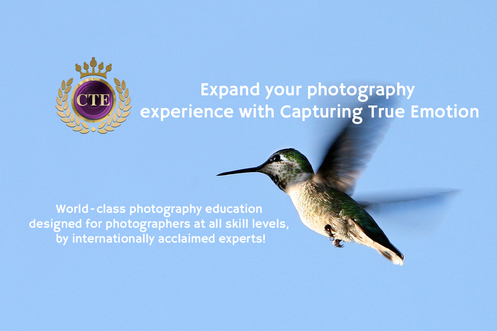 Capturing true emotion photography academy