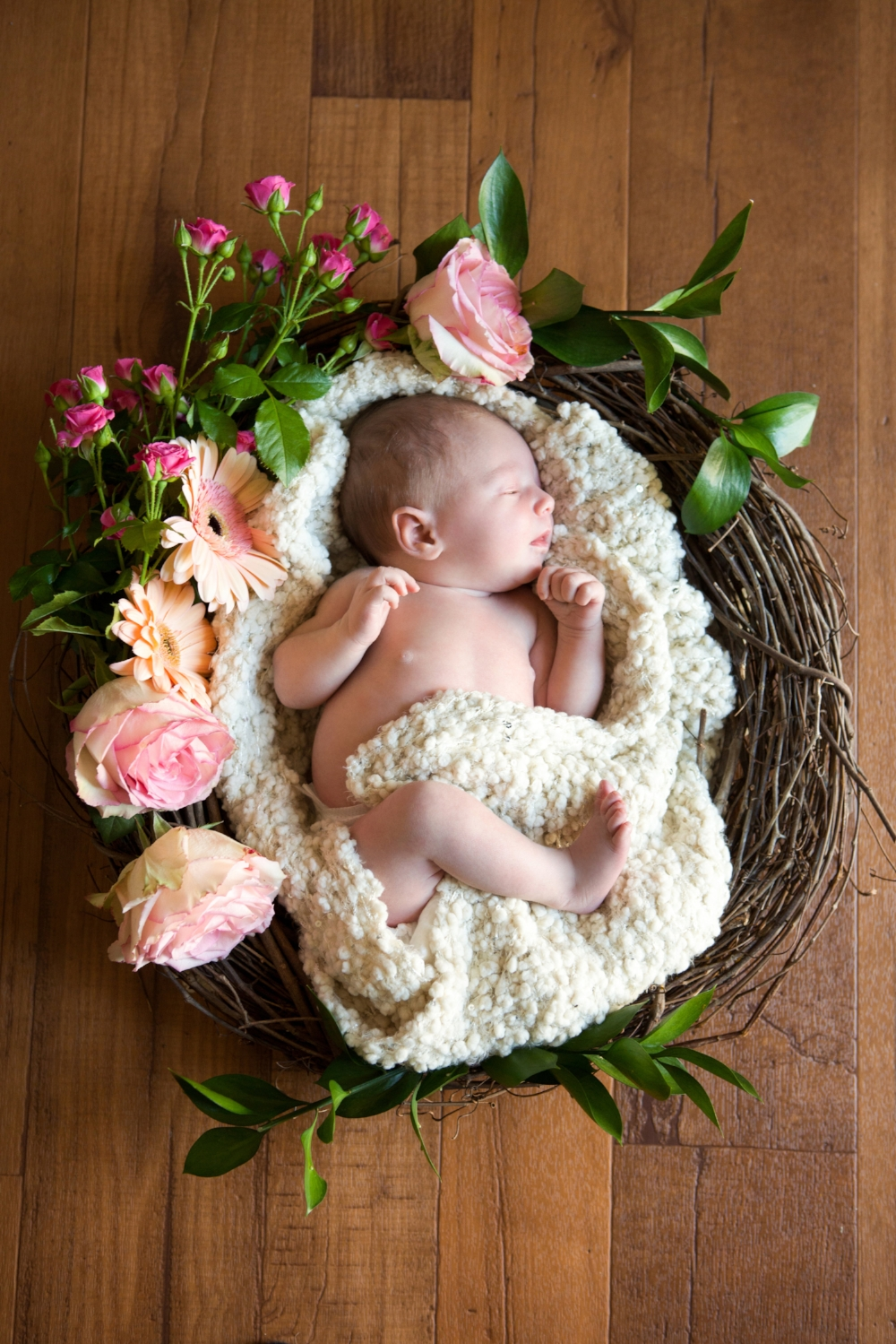 val-westover-photography-newborn