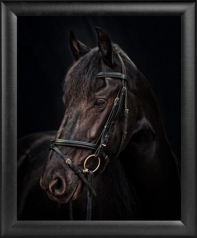 Black 16x20 frame