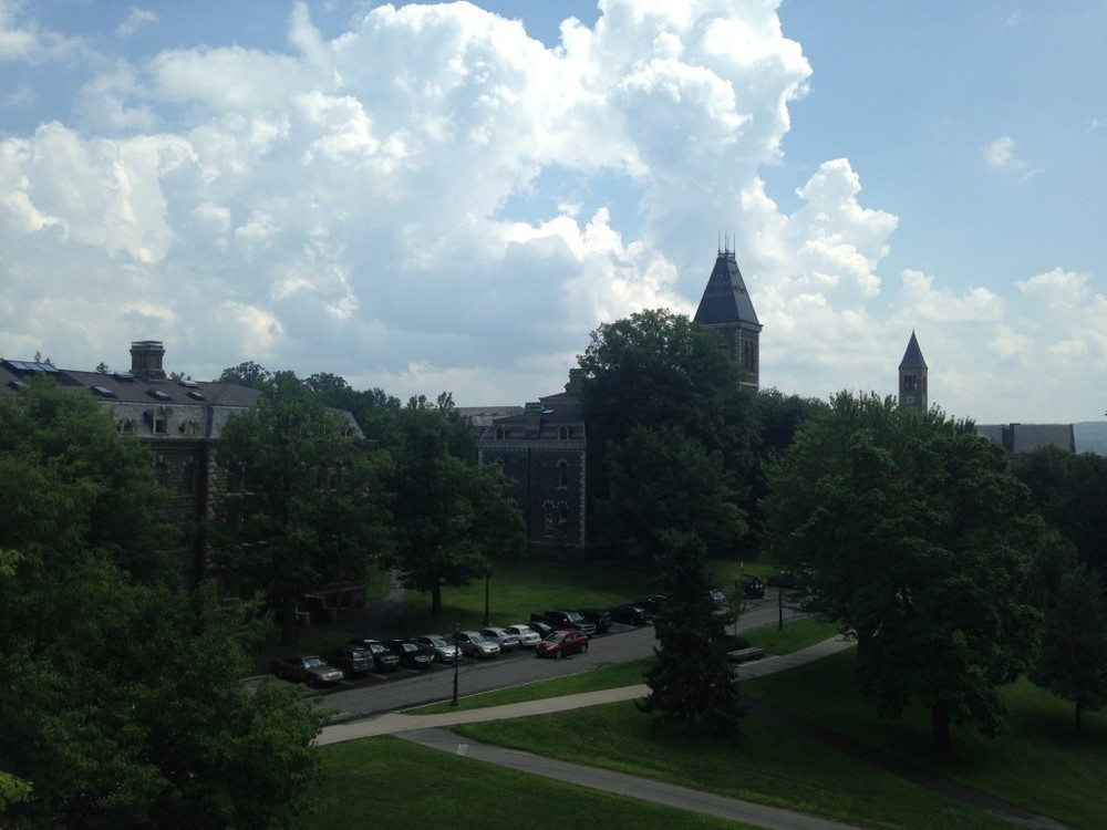 Cornell University #2