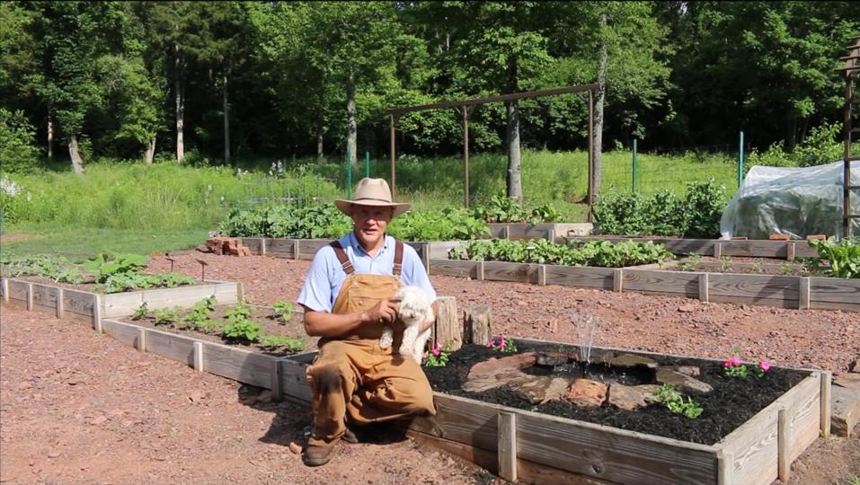 farmer-fred-plant-smart-living-psl-backyard-garden-fountain-install-project