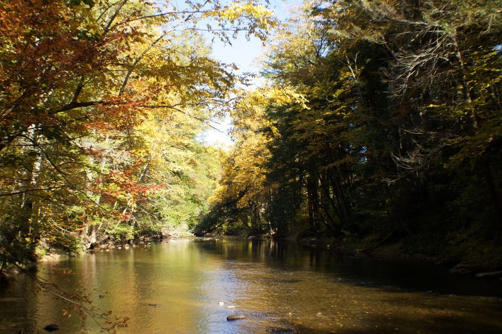 jacobsburg-creek-hiking