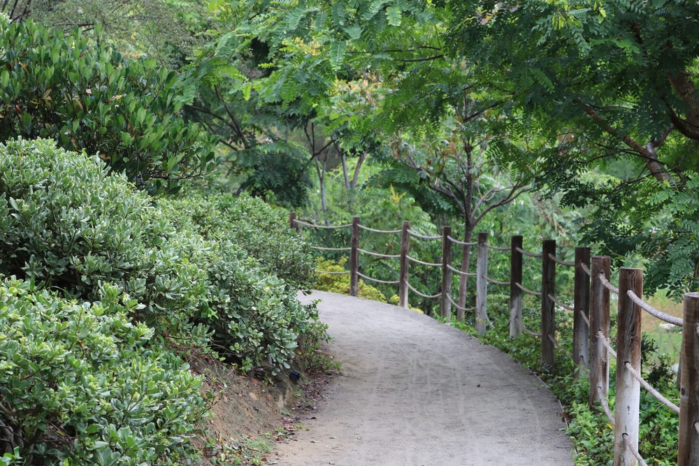 walking-path-balboa-park-jap-garden